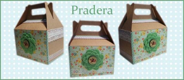 caja regalo pradera